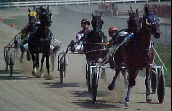 Race 4 Racing Action