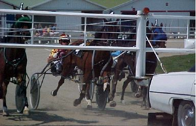 Race 5 Racing Action