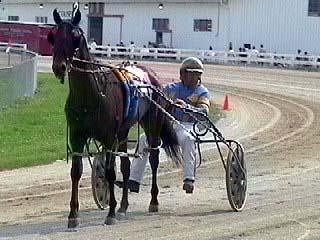 Horse and Brinkerhoff